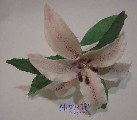 Lilium in pasta di gomma